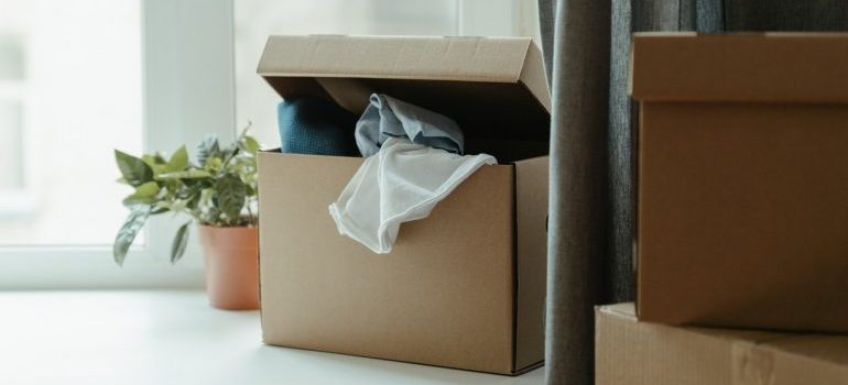 Packed cardboard box