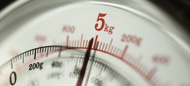 weight scale zoomed in