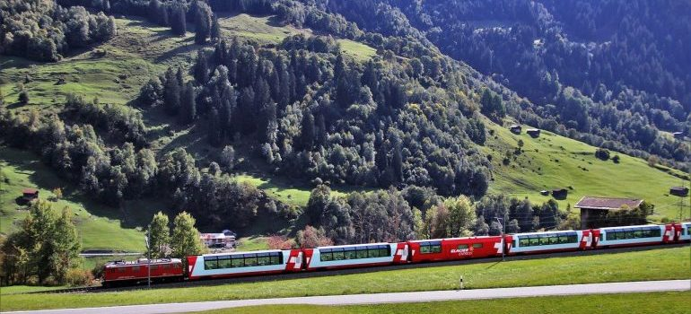 Green field, tries and passing train with Switzerland's flag